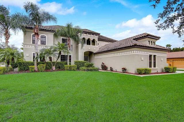 3720 Marbury Court, Land O Lakes, FL 34638 (MLS #T3328895) :: Visionary Properties Inc