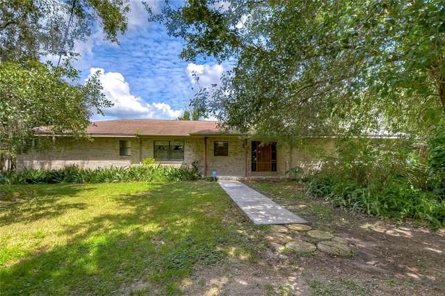9723 Allen Road, Lithia, FL 33547 (MLS #T3328913) :: Zarghami Group