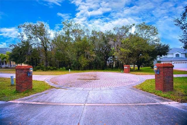 5330 Golf Links Boulevard, Zephyrhills, FL 33541 (MLS #T3328936) :: RE/MAX Elite Realty