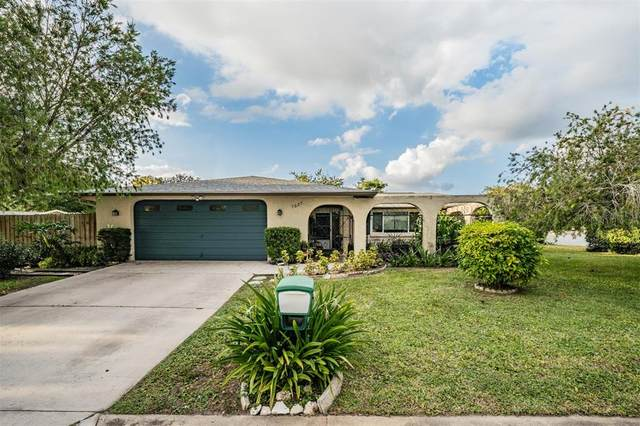 7327 Palimino Drive, Port Richey, FL 34668 (MLS #T3328943) :: The Curlings Group