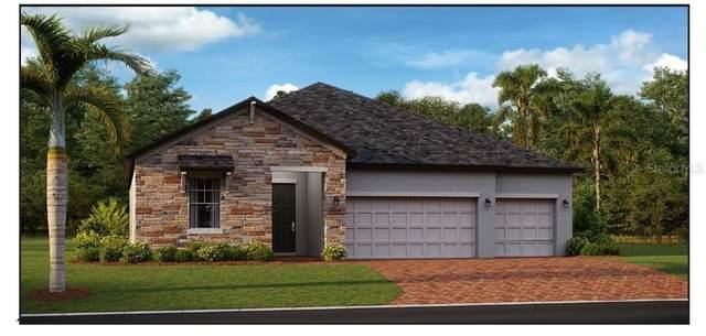 3952 SE 4TH Avenue, Ocala, FL 34480 (MLS #T3328972) :: Keller Williams Realty Select