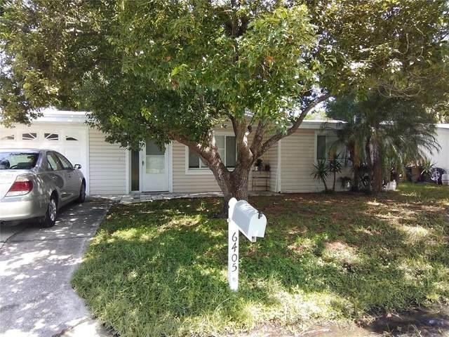 6405 Hyperion Drive, Port Richey, FL 34668 (MLS #T3328984) :: Zarghami Group