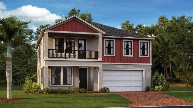 8223 Capstone Ranch Drive, New Port Richey, FL 34655 (MLS #T3328986) :: Zarghami Group
