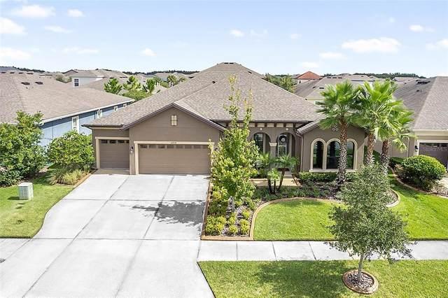 32938 Natural Bridge Road, Wesley Chapel, FL 33543 (MLS #T3328990) :: Zarghami Group