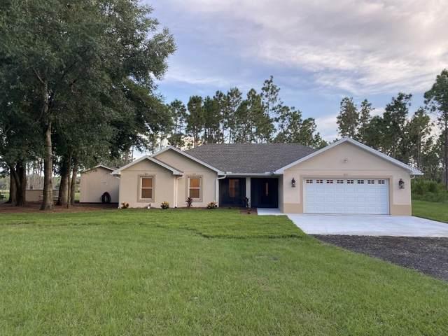 36426 Tanner Lane, Eustis, FL 32736 (MLS #T3328997) :: American Premier Realty LLC