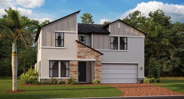 8249 Capstone Ranch Drive, New Port Richey, FL 34655 (MLS #T3328998) :: Zarghami Group