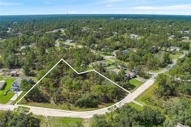 12172 Pioneer Avenue, Weeki Wachee, FL 34614 (MLS #T3329044) :: RE/MAX LEGACY