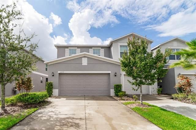 10559 Lake Montauk Drive, Riverview, FL 33578 (MLS #T3329087) :: Zarghami Group