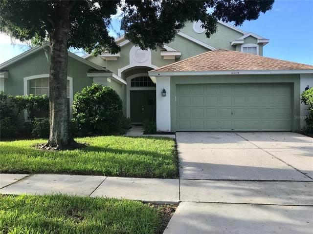 10104 Downey Lane, Tampa, FL 33626 (MLS #T3329155) :: Cartwright Realty