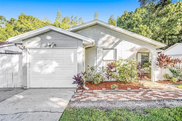 12304 Forest Lane Drive, Tampa, FL 33624 (MLS #T3329170) :: Everlane Realty