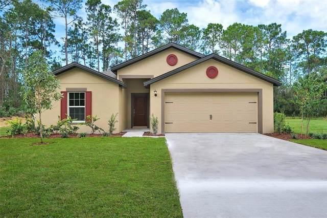 225 Elm Court, Poinciana, FL 34759 (MLS #T3329260) :: SunCoast Home Experts