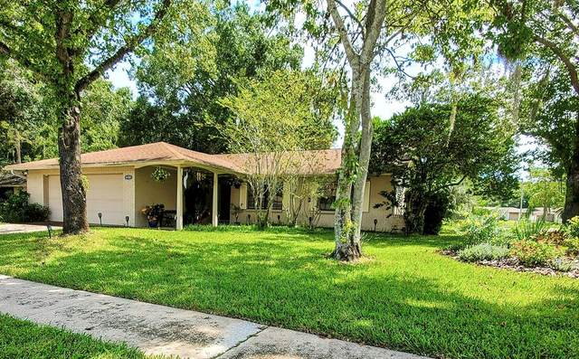 16501 Lonesdale Place, Tampa, FL 33624 (MLS #T3329273) :: Zarghami Group
