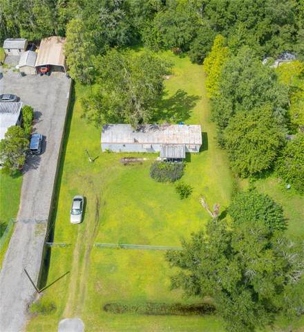 6139 Mangrove Drive, Wesley Chapel, FL 33544 (MLS #T3329308) :: Cartwright Realty