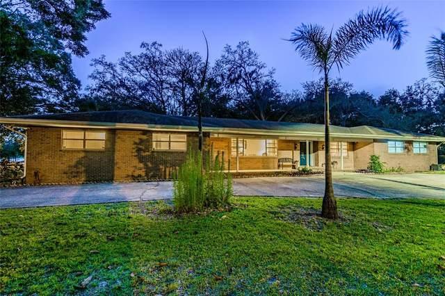 16350 Hanna Road, Lutz, FL 33549 (MLS #T3329317) :: Delgado Home Team at Keller Williams
