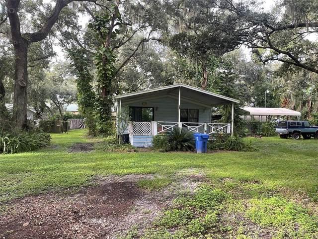 10510 Saint Rose Court, Riverview, FL 33578 (MLS #T3329363) :: Team Bohannon