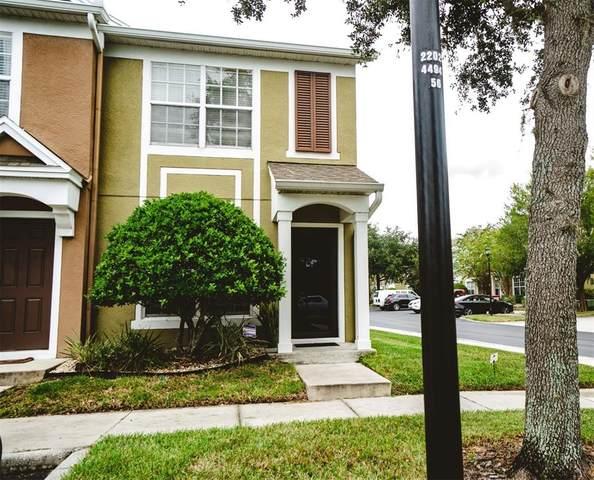 6903 Rock Springs Way, Tampa, FL 33625 (MLS #T3329419) :: Zarghami Group