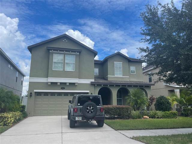 19227 Early Violet Drive, Tampa, FL 33647 (MLS #T3329457) :: Team Bohannon