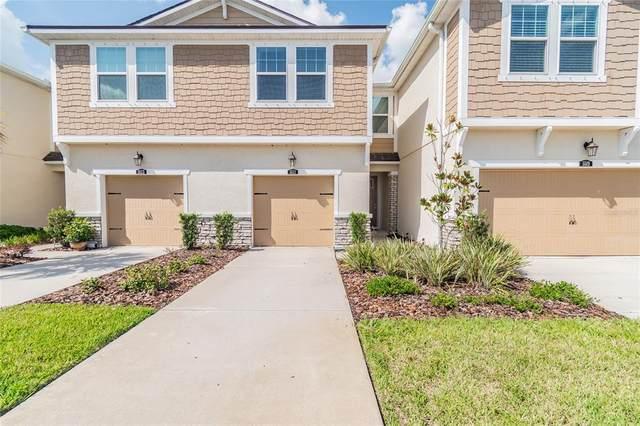 5521 Cumberland Star Court, Lutz, FL 33558 (MLS #T3329460) :: Zarghami Group