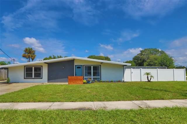 4419 W Montgomery Avenue, Tampa, FL 33616 (MLS #T3329489) :: Zarghami Group