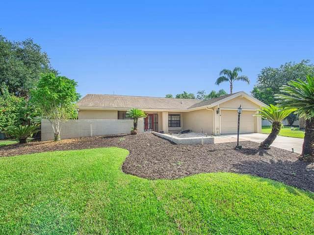 14814 Dartmoor Lane, Tampa, FL 33624 (MLS #T3329502) :: Zarghami Group