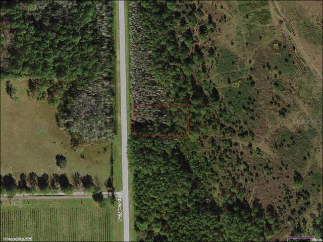 Old Grade Road, Polk City, FL 33868 (MLS #T3329516) :: The Duncan Duo Team