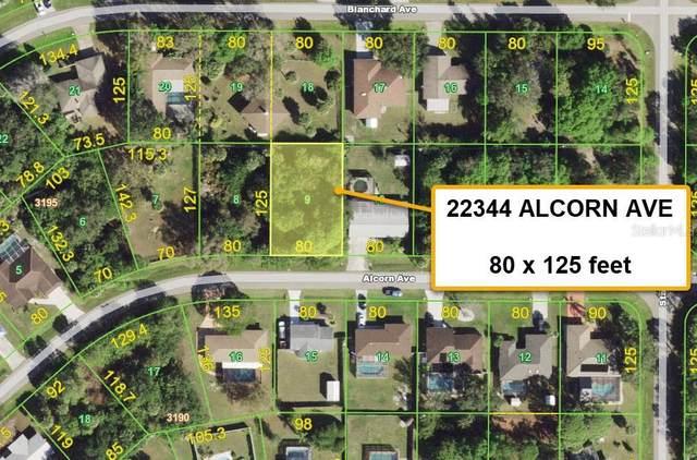 22344 Alcorn Avenue, Port Charlotte, FL 33952 (MLS #T3329521) :: Premium Properties Real Estate Services