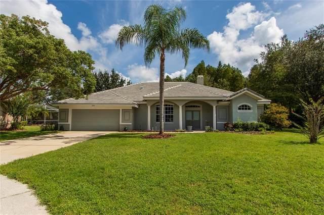 Palm Harbor, FL 34685 :: Vacasa Real Estate