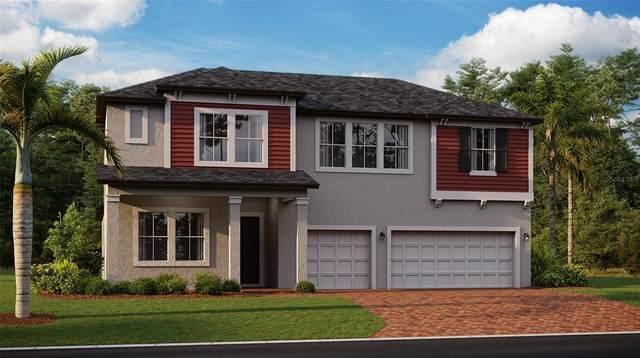 3890 SE 7TH Avenue, Ocala, FL 34480 (MLS #T3329543) :: Keller Williams Realty Select