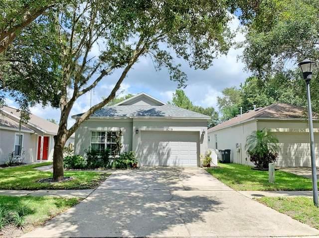 6215 Kiteridge Drive, Lithia, FL 33547 (MLS #T3329549) :: Everlane Realty