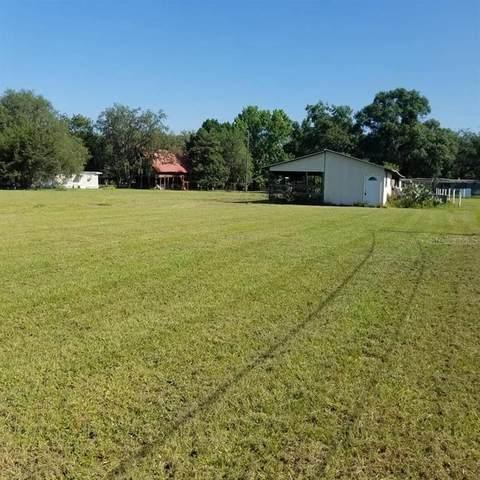 38137 Huff Drive, Zephyrhills, FL 33542 (MLS #T3329563) :: The Duncan Duo Team