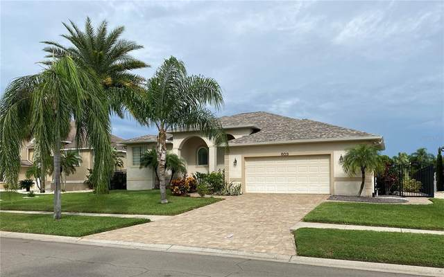 803 Bunker View Drive, Apollo Beach, FL 33572 (MLS #T3329585) :: Cartwright Realty