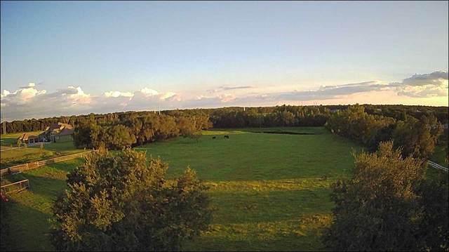 13723 Canterfield Drive, Riverview, FL 33579 (MLS #T3329611) :: Team Bohannon