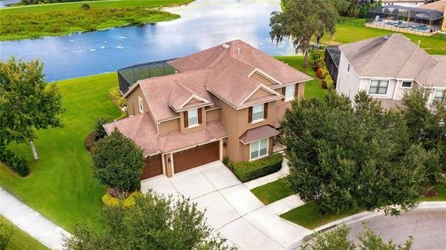 5863 Parkset Drive, Lithia, FL 33547 (MLS #T3329614) :: Everlane Realty