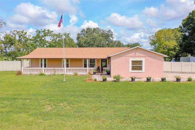 20201 Bowman Road, Spring Hill, FL 34610 (MLS #T3329624) :: Zarghami Group