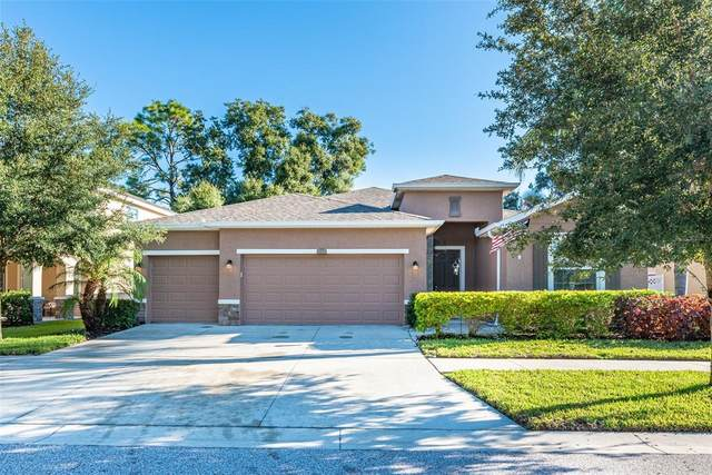 10412 Pleasant Spring Way, Riverview, FL 33578 (MLS #T3329627) :: Zarghami Group