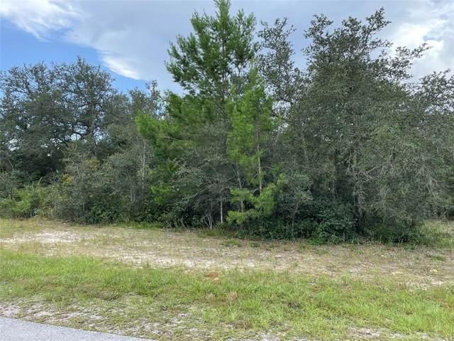 SW 33RD COURT Road, Ocala, FL 34473 (MLS #T3329644) :: Sarasota Gulf Coast Realtors