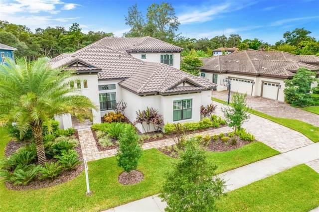5321 Osprey Ridge Drive, Lithia, FL 33547 (MLS #T3329694) :: Cartwright Realty