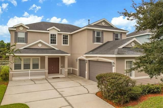 20005 Tamiami Avenue, Tampa, FL 33647 (MLS #T3329699) :: The Nathan Bangs Group