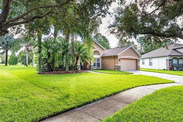 5830 Heronview Crescent Drive, Lithia, FL 33547 (MLS #T3329722) :: Zarghami Group