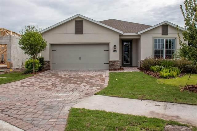 11303 Emerald Shore Drive, Riverview, FL 33579 (MLS #T3329746) :: Zarghami Group