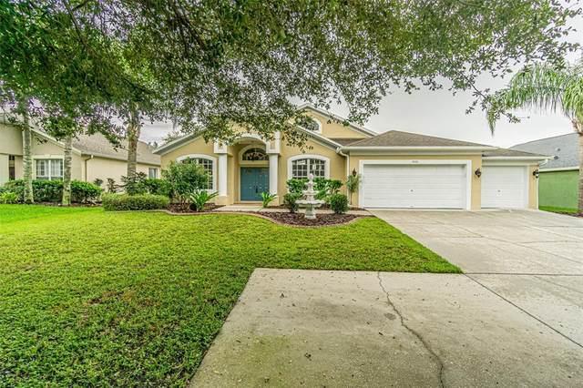 1826 Cardamon Drive, Trinity, FL 34655 (MLS #T3329766) :: Sarasota Gulf Coast Realtors