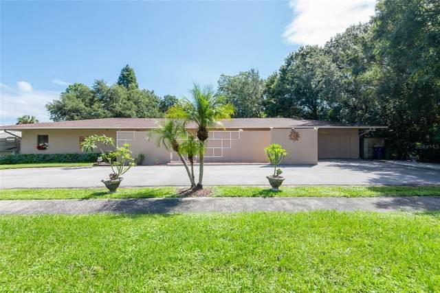 6710 S Trask Street, Tampa, FL 33616 (MLS #T3329793) :: Orlando Homes Finder Team