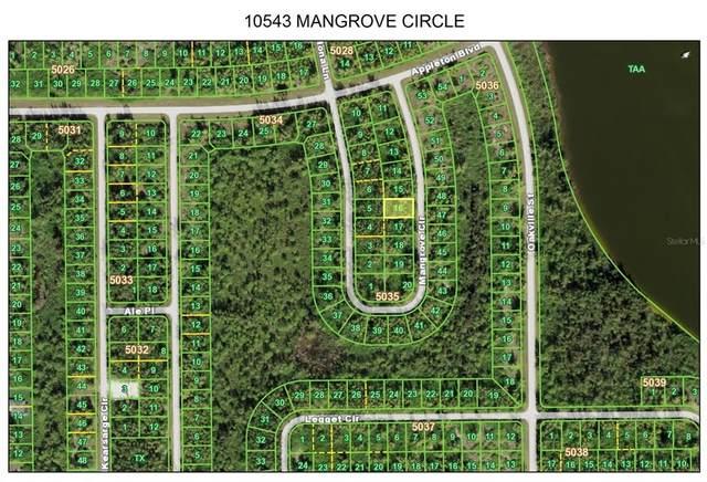 10543 Mangrove Circle, Port Charlotte, FL 33981 (MLS #T3329801) :: Bustamante Real Estate