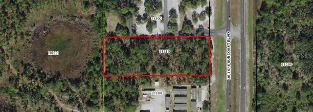 7114 S Suncoast Boulevard, Homosassa, FL 34446 (MLS #T3329825) :: Carmena and Associates Realty Group