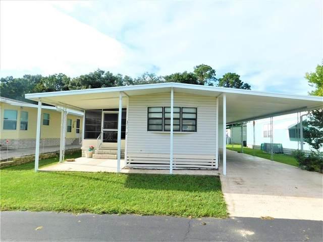 37112 Lois Avenue, Zephyrhills, FL 33542 (MLS #T3329834) :: Sarasota Gulf Coast Realtors