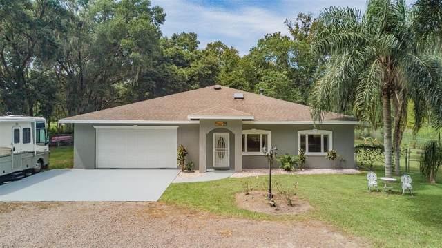 35545 Lake Unity Road, Fruitland Park, FL 34731 (MLS #T3329836) :: Vacasa Real Estate