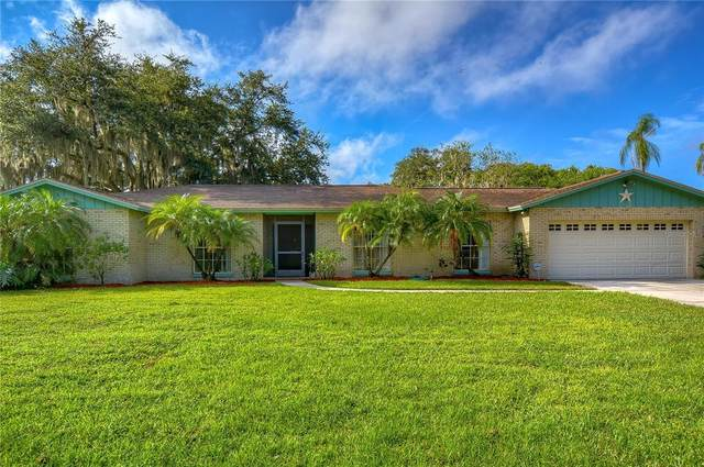 1115 Lady Guinevere Drive, Valrico, FL 33594 (MLS #T3329840) :: Everlane Realty