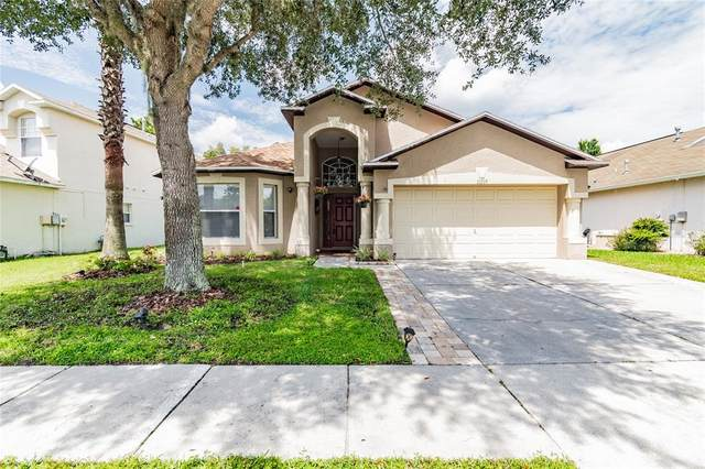 31239 Chatterly Drive, Wesley Chapel, FL 33543 (MLS #T3329862) :: Zarghami Group