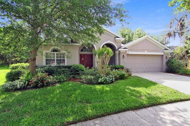 6018 Shearwater Lane, Lithia, FL 33547 (MLS #T3329863) :: Cartwright Realty