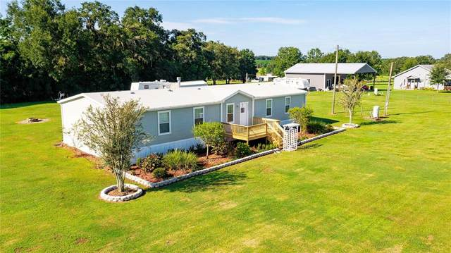 39670 Wilds Road, Dade City, FL 33525 (MLS #T3329878) :: Carmena and Associates Realty Group